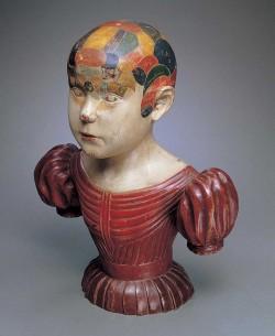 Phrenological head by Asa Ames (1823–1851), Evans, New York, ca. 1850